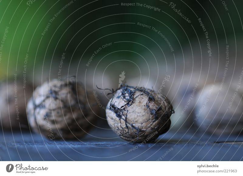 nuts Lebensmittel Ernährung Bioprodukte Natur Herbst Nutzpflanze blau braun grün schwarz Nuss Walnuss Schalenfrucht Tisch hart brechen unberührt natürlich
