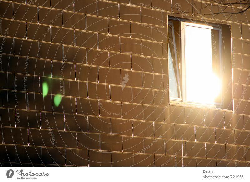 Glückwunsch an carl und boing Haus Fassade Fenster hell braun Sonnenstrahlen Reflexion & Spiegelung Gedeckte Farben Außenaufnahme Menschenleer