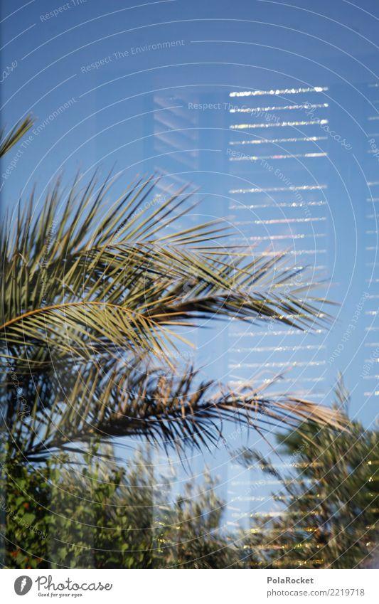 #A# modern Menschenleer ästhetisch Reichtum Fenster Reflexion & Spiegelung Palme Ferien & Urlaub & Reisen Urlaubsfoto Urlaubsstimmung Urlaubsort Villa