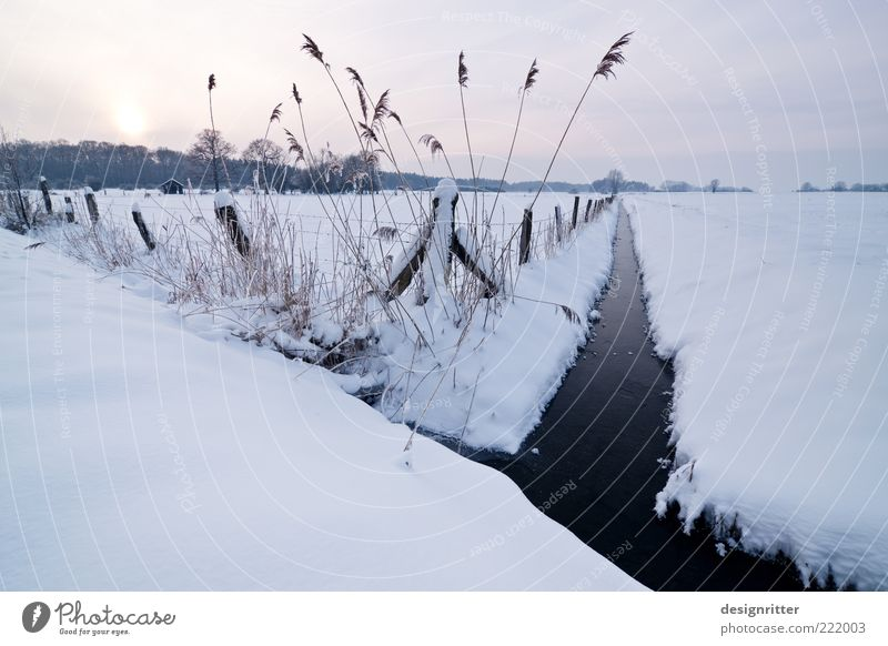 kuschelig Horizont Sonne Sonnenaufgang Sonnenuntergang Winter Klima Wetter Eis Frost Schnee Bach Wassergraben Kanal kalt Farbfoto Außenaufnahme Menschenleer
