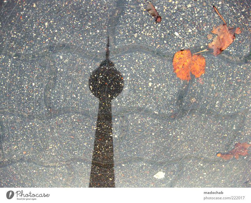totem Umwelt Natur Herbst Klima Klimawandel Wetter schlechtes Wetter Regen Berlin Turm Architektur Berliner Fernsehturm bizarr Pfütze Blatt Farbfoto