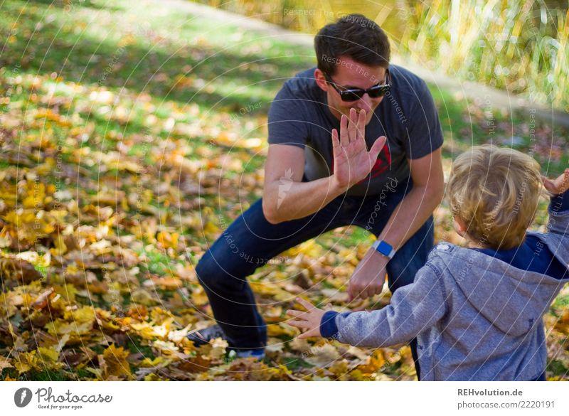 check Stil Mensch Kind Junge Mann Erwachsene Vater Familie & Verwandtschaft 2 1-3 Jahre Kleinkind 30-45 Jahre Umwelt Natur Herbst Park Wiese Sonnenbrille