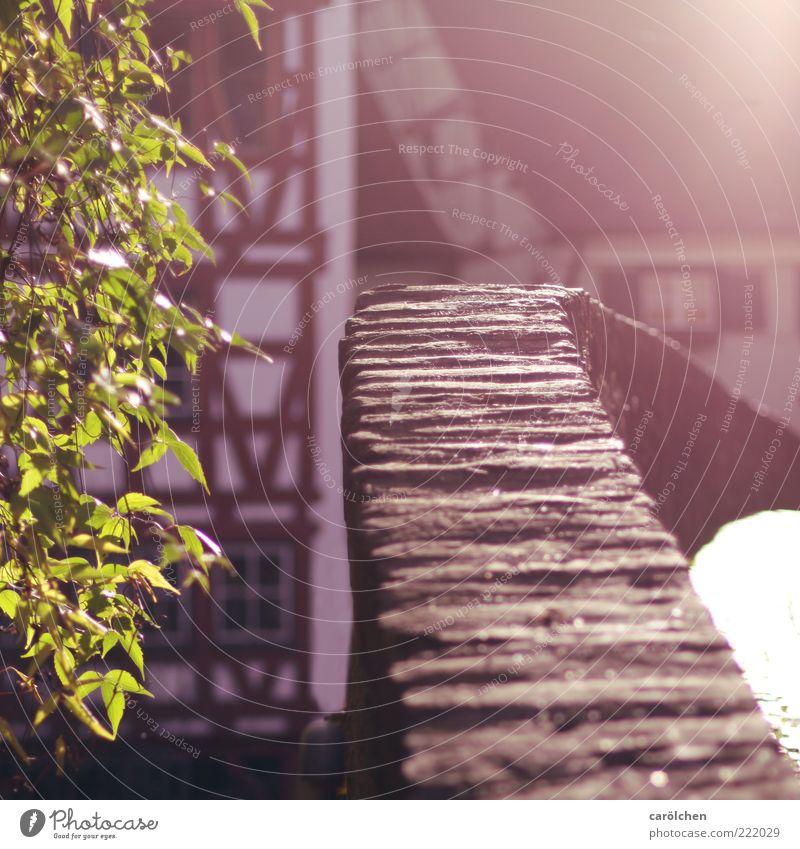 Altstadt Romantik (LT Ulm 14.11.10) grün Mauer braun Brücke historisch Anschnitt Bildausschnitt Kleinstadt Fachwerkfassade charmant Steinmauer Fachwerkhaus
