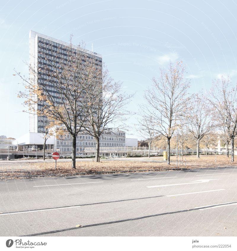 karlsruhe Himmel Baum Stadt Pflanze ruhig Haus Straße Herbst Wege & Pfade Gebäude Architektur Hochhaus Bauwerk Schönes Wetter Natur