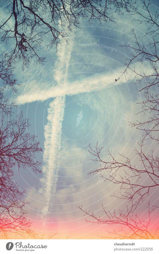 + Natur Himmel Wolken Winter Baum Zeichen Kreuz Linie außergewöhnlich Hoffnung Glaube Traurigkeit Gott Kondensstreifen Zweig Rahmen Himmel (Jenseits)