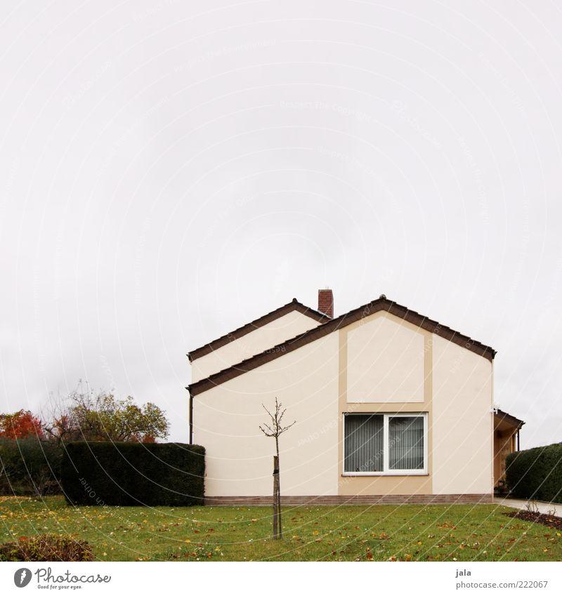 haus Himmel Pflanze Baum Gras Sträucher Garten Wiese Haus Einfamilienhaus Bauwerk Gebäude Architektur Mauer Wand Fassade Fenster trist Farbfoto Außenaufnahme