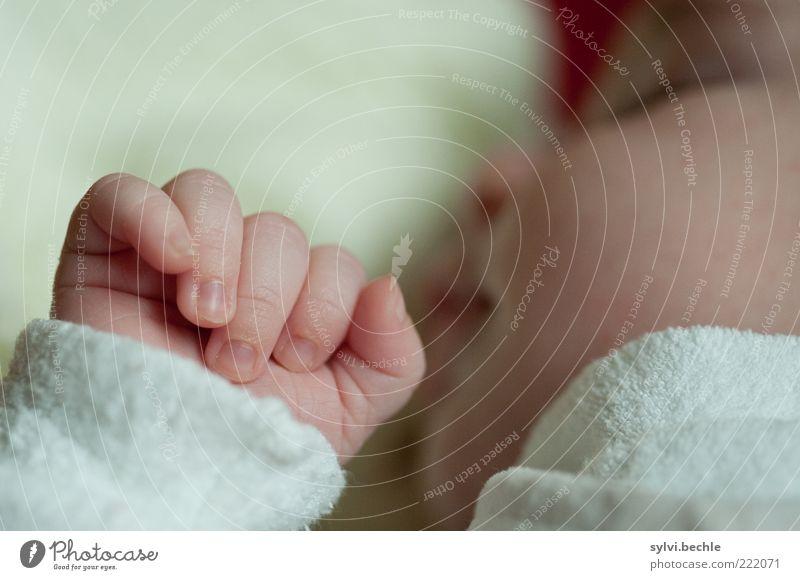 asleep Mensch Kind Baby Mädchen Kindheit Leben Gesicht Auge Nase Mund Hand Finger Bekleidung Pullover Erholung Lächeln liegen schlafen Glück kuschlig klein weiß