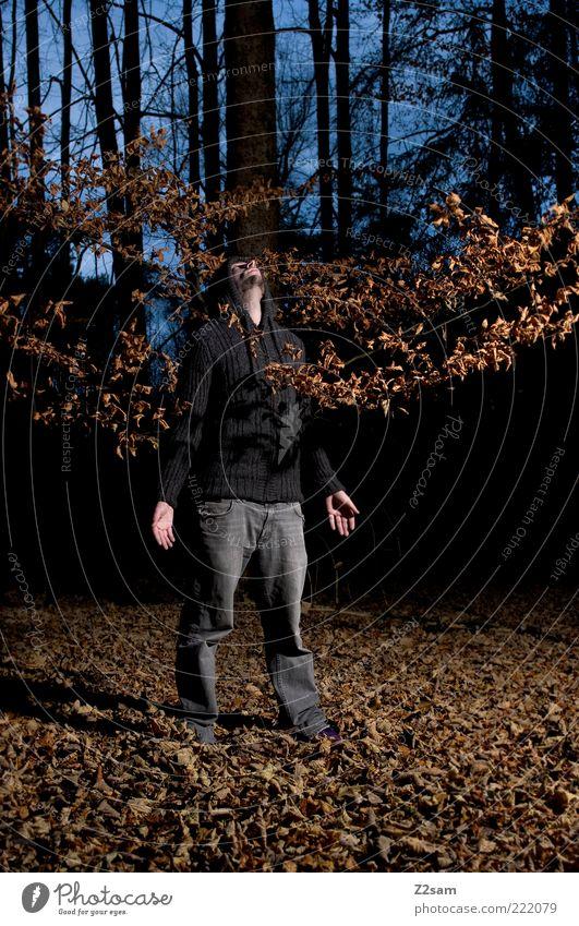 erleuchtung Mensch Natur Jugendliche Einsamkeit Wald dunkel Herbst träumen Traurigkeit warten Erwachsene Umwelt maskulin Lifestyle Coolness retro
