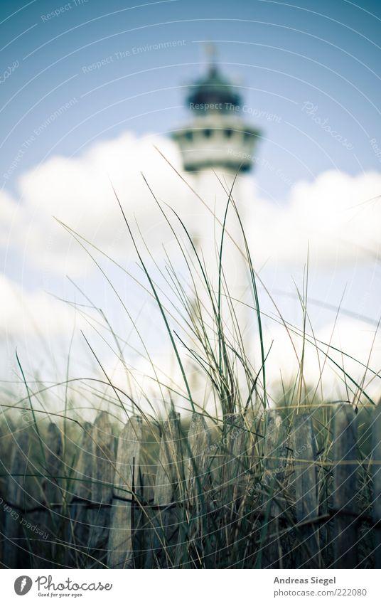 Egmond Ferien & Urlaub & Reisen Sommerurlaub Leuchtturm Umwelt Natur Landschaft Himmel Wolken Schönes Wetter Gras Dünengras Küste Egmond aan Zee Niederlande