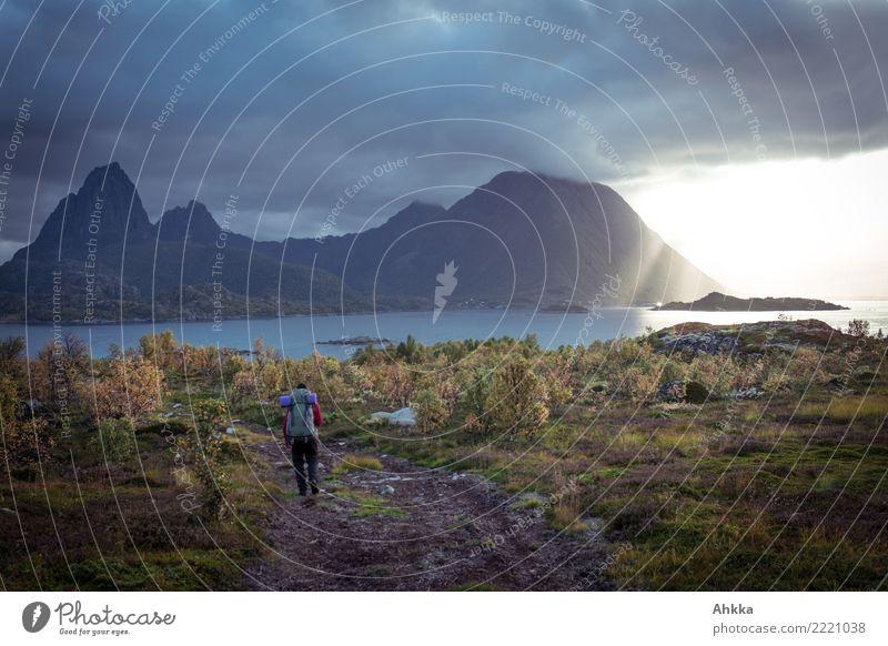 Bedrohliche Wolkenwand, Sonne, Wanderer, Fjord, Herbst, Lofoten Pflanze Baum Berge u. Gebirge dunkel Religion & Glaube Küste außergewöhnlich wild hell Regen