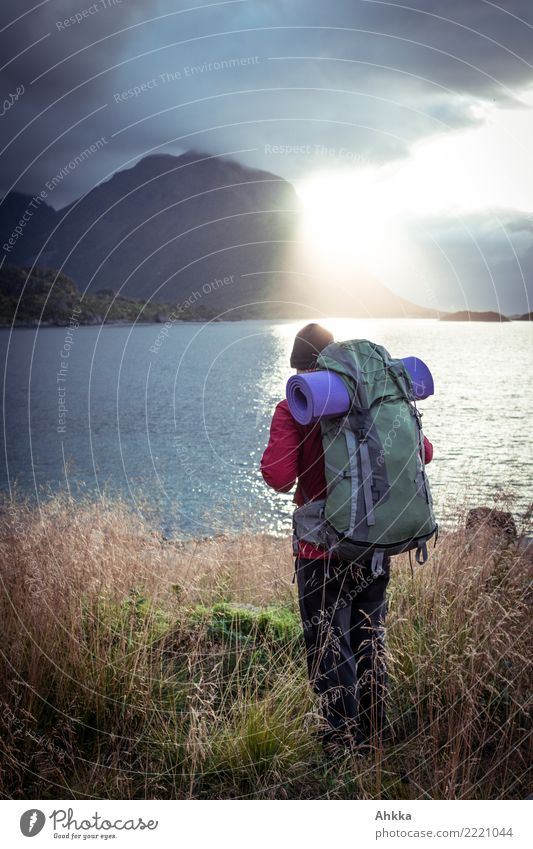 Junger Mann mit Wanderrucksack am Meer im Gegenlicht, Lofoten Ferien & Urlaub & Reisen Jugendliche Landschaft Einsamkeit Ferne Berge u. Gebirge