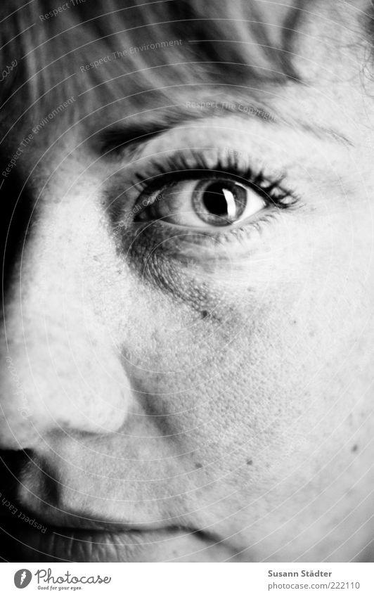 watching Frau Jugendliche schön Gesicht Auge feminin glänzend Erwachsene Nase authentisch bedrohlich beobachten außergewöhnlich entdecken Wange Sommersprossen