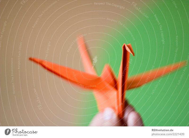 1300 ... Kranich Hand festhalten grün orange Kreativität Origami Falte Farbfoto Innenaufnahme Nahaufnahme Makroaufnahme Textfreiraum oben Tag Unschärfe