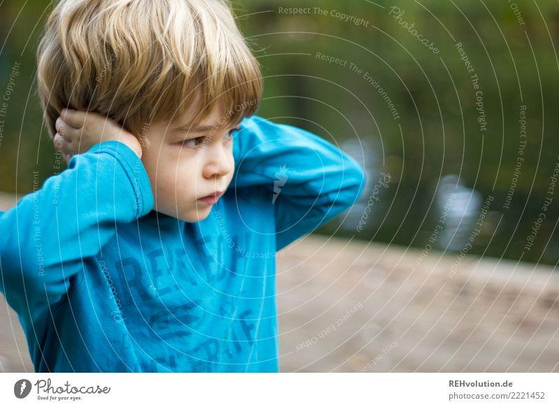kind hält sich die ohren zu Mensch Kind Junge Kindheit 1 3-8 Jahre Umwelt Natur Pullover blond festhalten hören Aggression authentisch frech klein natürlich