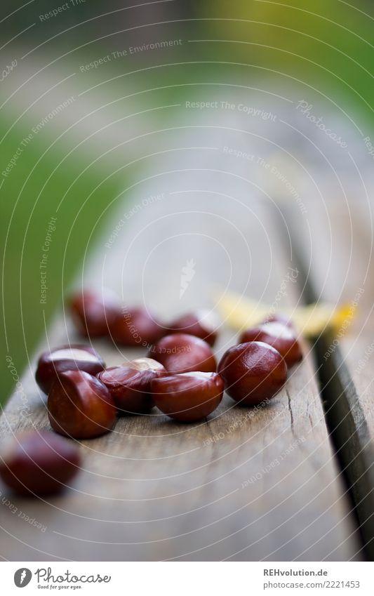 Kastanien Umwelt Natur Herbst Kastanienbaum liegen glänzend braun Holz viele Sammlung Farbfoto Außenaufnahme Nahaufnahme Textfreiraum oben Tag Unschärfe