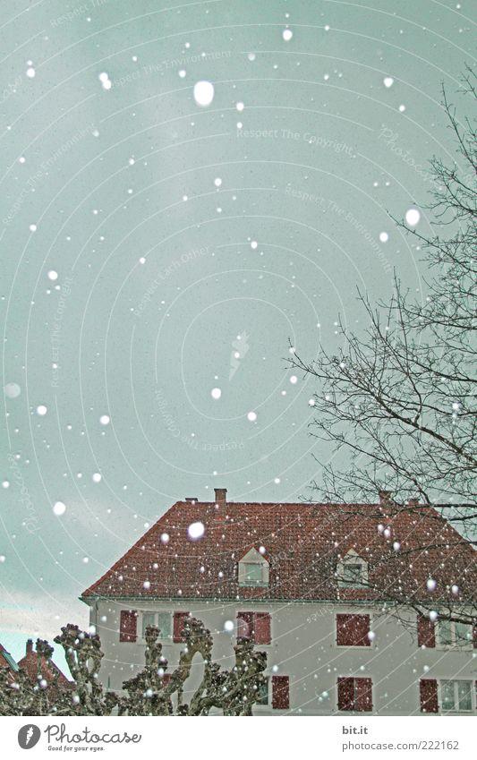Leise rieselt der Schnee II Winter Klima Schneefall Baum Haus Einfamilienhaus Fassade Fenster Dach kalt Surrealismus Tradition Heimat Kitsch Winterstimmung
