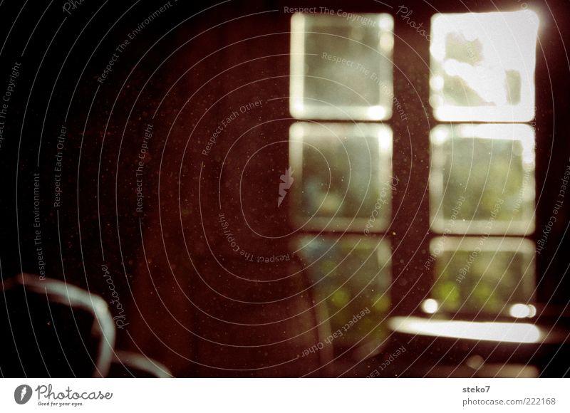 Sonnen-Staub Fenster braun ruhig Wohnzimmer Stuhllehne Schweben Feinstaub glänzend Gedeckte Farben Innenaufnahme Menschenleer Textfreiraum links Sonnenstrahlen