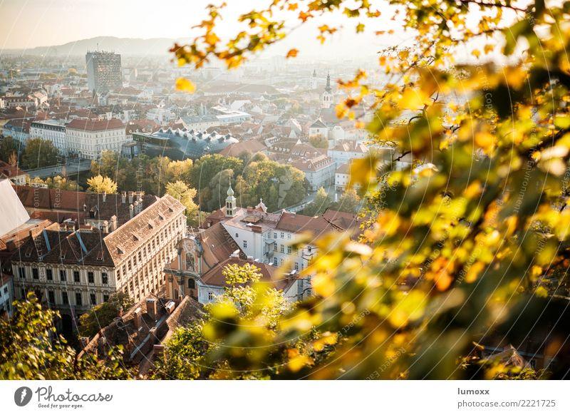 graziös Umwelt Natur Herbst braun gelb gold Graz Schlossberg Österreich Kunsthaus Unschärfe Blatt Stadt Stadtzentrum Weltkulturerbe Dach Farbfoto Abend