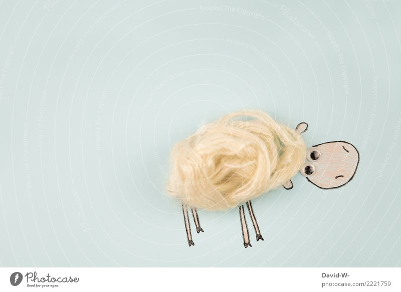 Schafwolle elegant Stil sparen Basteln Kunst Künstler Kunstwerk Umwelt Natur Tier Nutztier Fell 1 beobachten Wolle Kreativität niedlich außergewöhnlich