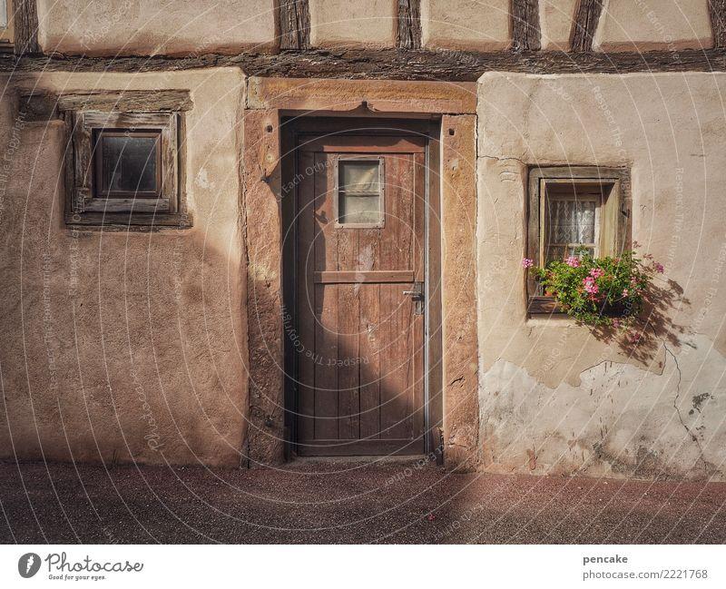 vom alten schlag Blume Kleinstadt Altstadt Menschenleer Gebäude Architektur Fassade Fenster Tür ästhetisch authentisch Freundlichkeit historisch Originalität