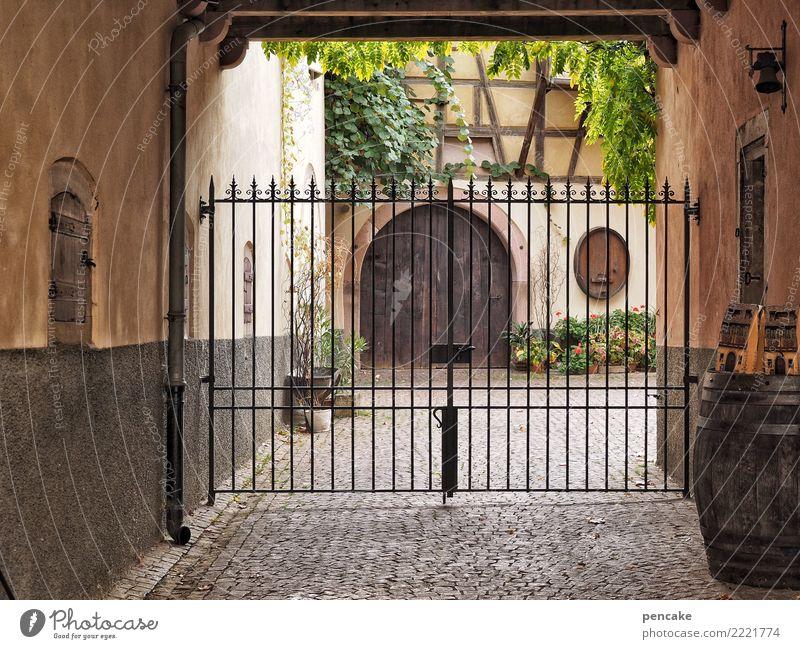 ablehnung | wir müssen draussen bleiben Pflanze Altstadt Fassade Tür alt authentisch historisch Innenhof Eisentor Wein Weinfass Elsass eguisheim