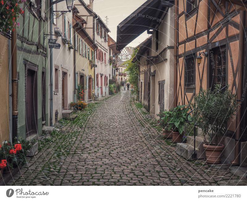 wandelbar Eguisheim Frankreich Dorf Altstadt Haus Architektur Bewegung entdecken Erholung Ferien & Urlaub & Reisen Idylle Fachwerkhaus alt historisch