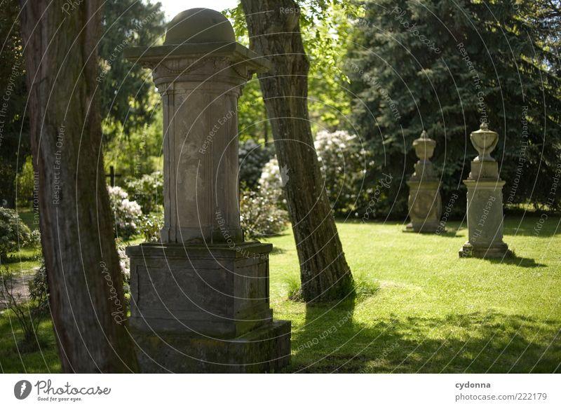 Friedhof Natur Baum ruhig Einsamkeit Leben Wiese Tod Park Religion & Glaube Umwelt Zeit Trauer Vergänglichkeit Idylle Vergangenheit Skulptur
