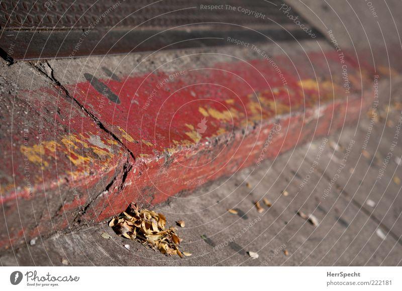 Curbside alt rot Blatt gelb Straße grau Stein Beton Ecke Bürgersteig Furche Vorsicht Herbstlaub Bordsteinkante Abnutzung verweht