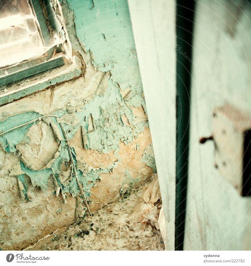 Suchen ruhig Einsamkeit Farbe Leben Wand Fenster Mauer Raum Tür Zeit ästhetisch Wandel & Veränderung Feder Häusliches Leben Vergänglichkeit einzigartig