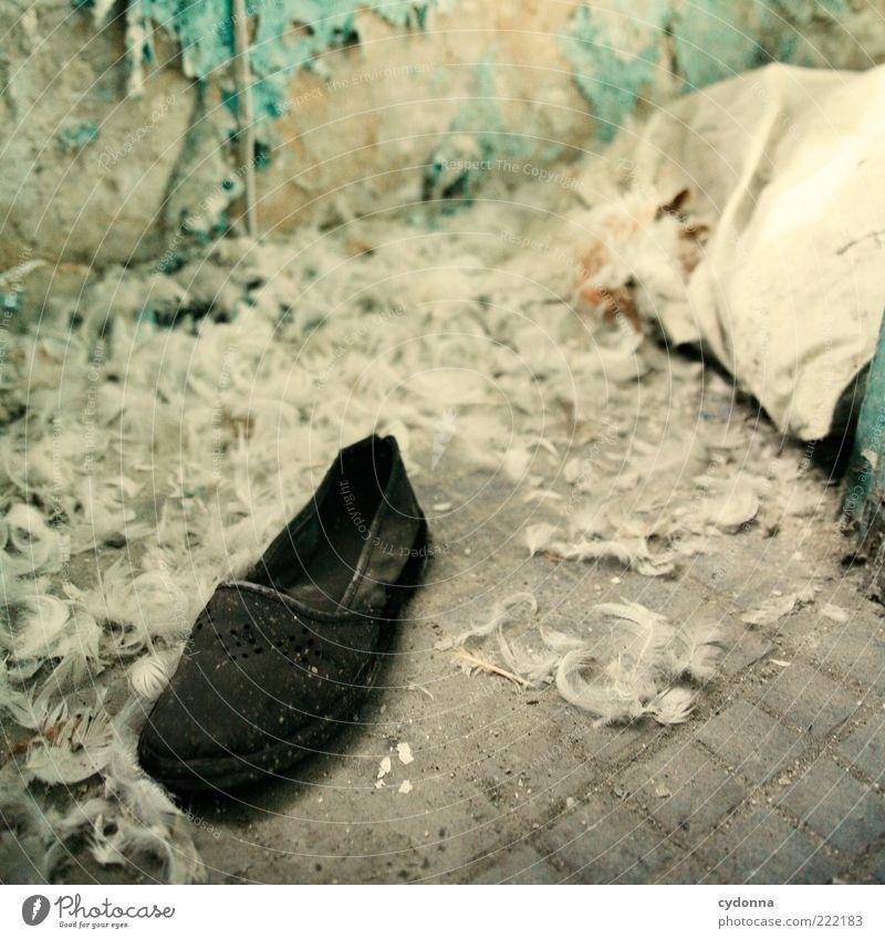 Finden ruhig Einsamkeit Leben Tod Schuhe Raum Zeit ästhetisch kaputt Wandel & Veränderung Feder Häusliches Leben Vergänglichkeit einzigartig geheimnisvoll Verfall
