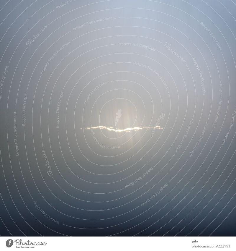 erscheinung Natur weiß blau grau Nebel beobachten außergewöhnlich gruselig leuchten Geister u. Gespenster mystisch unheimlich Erscheinung Lichtschein Aktion