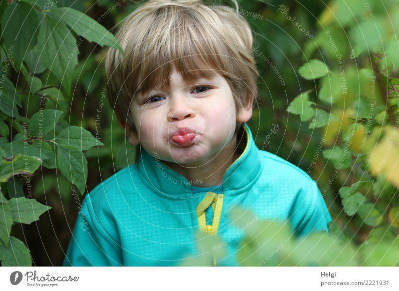 Porträt eines kleinen Jungen, der eine Schnute zieht Mensch maskulin Kind Kindheit Kopf Haare & Frisuren Gesicht 1 3-8 Jahre Umwelt Natur Pflanze Sträucher