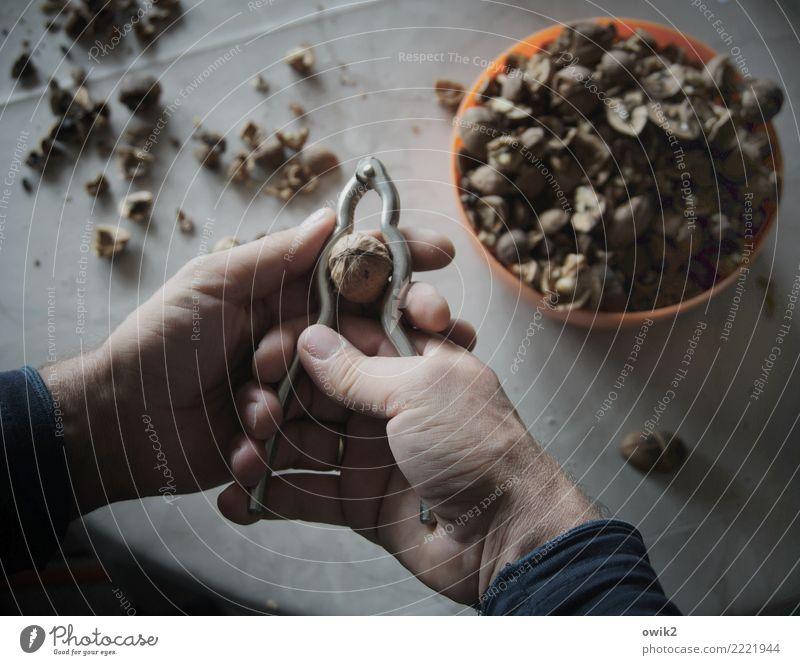 Nussknackersuite Freizeit & Hobby Mann Erwachsene Hand Finger Daumen 1 Mensch 45-60 Jahre Walnuss Nussschale Schalen & Schüsseln Tischplatte Tischwäsche Metall