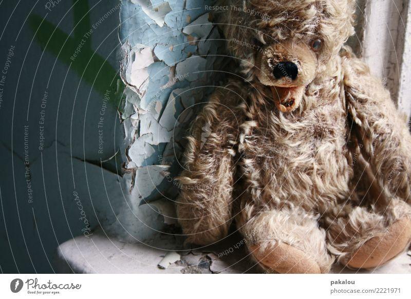 zurückgelassen Spielzeug Teddybär alt sitzen Traurigkeit warten nah blau braun Sorge Trauer Tod Schmerz Sehnsucht Enttäuschung Einsamkeit Gewalt vernachlässigen