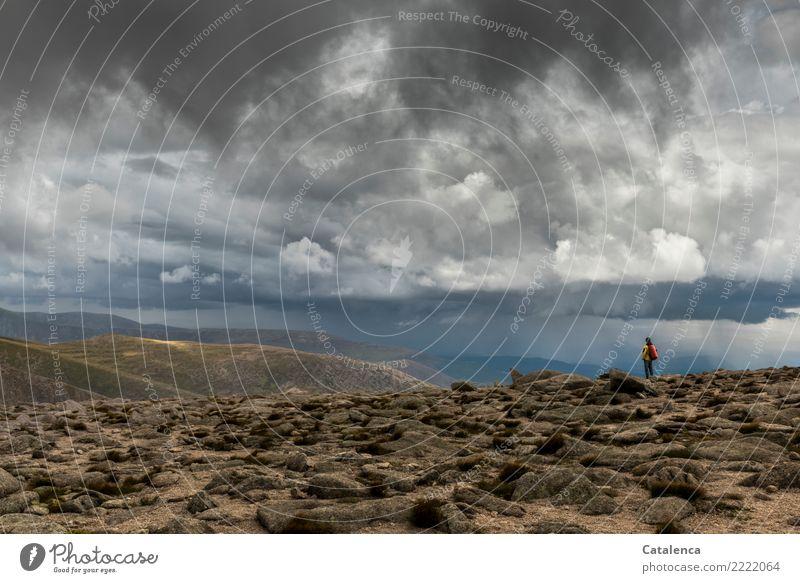 Wetterfront im Gebirge maskulin 1 Mensch Landschaft Gewitterwolken Horizont Sommer schlechtes Wetter Regen Moos Hügel Berge u. Gebirge beobachten wandern