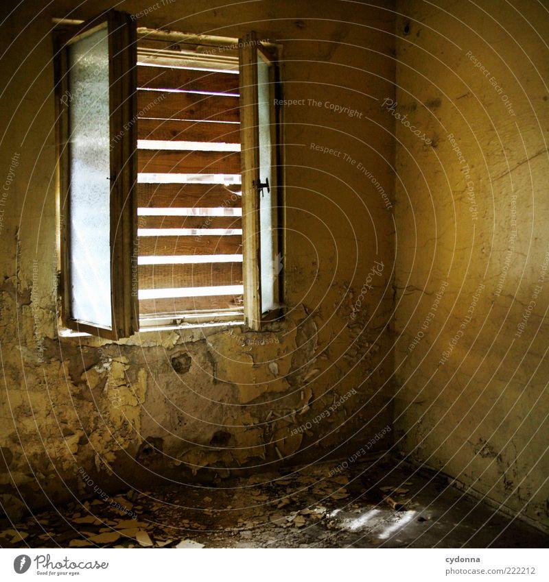 Schlechte Sicht Raum Mauer Wand Fenster ruhig Verfall Vergangenheit Vergänglichkeit Wandel & Veränderung Zeit Zerstörung Leerstand geschlossen Holzbrett
