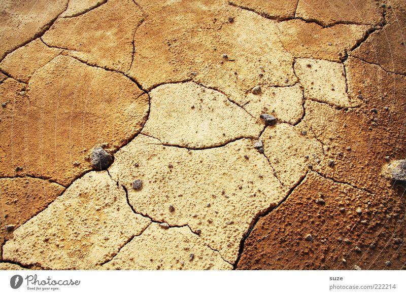 Umweg Natur Einsamkeit Umwelt Landschaft braun Erde Klima Zukunft Boden Wüste trocken Riss Dürre getrocknet Klimawandel karg