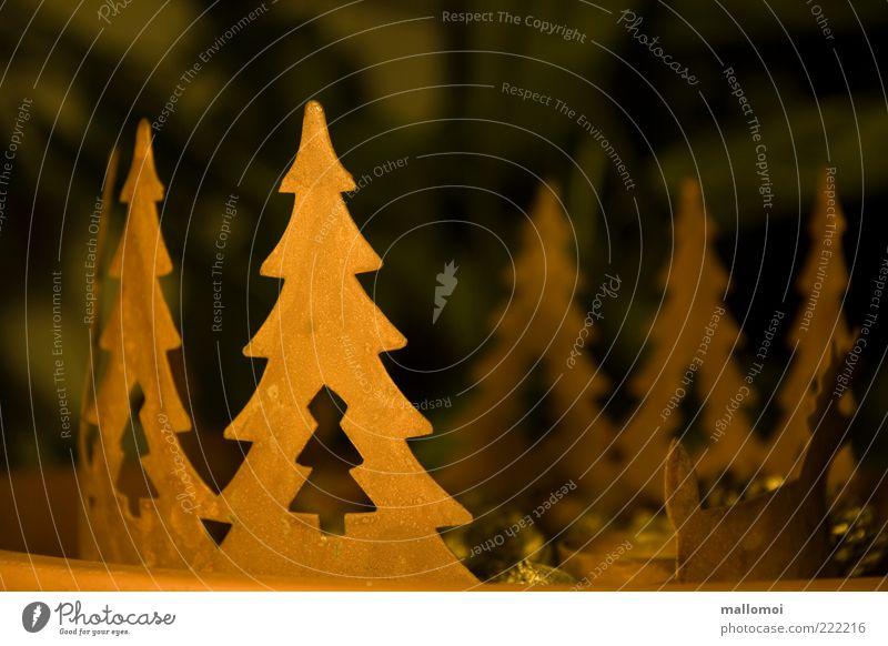 oh Tannenbaum Weihnachten & Advent Baum grün ruhig braun Weihnachtsbaum Dekoration & Verzierung Metallwaren Märchen friedlich Kunsthandwerk Adventskranz