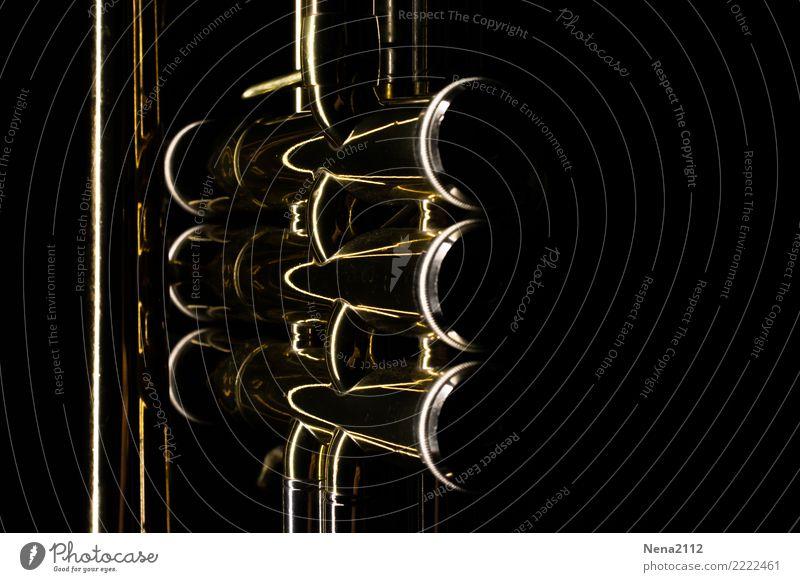 Trompete 02 Kunst Musik Musik hören Konzert Open Air Bühne Oper Band Musiker Orchester Gefühle Stimmung Freude Glück Lebensfreude Vorfreude Begeisterung Kraft