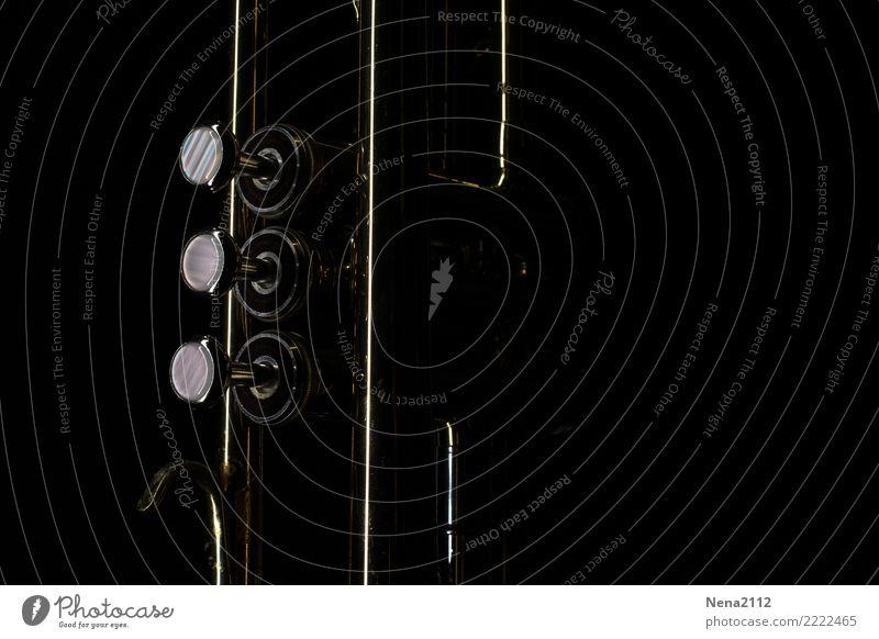 Trompete 01 Kunst Musik Musik hören Konzert Open Air Bühne Oper Band Musiker Orchester Gefühle Stimmung Lebensfreude Vorfreude Begeisterung Erfolg fleißig