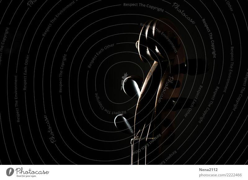 Geige 05 Kunst Musik Musik hören Konzert Open Air Bühne Oper Opernhaus Band Musiker Orchester dunkel schwarz schnecke Verwirbelung Streichinstrumente