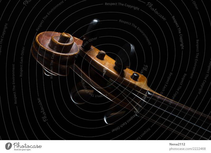 Geige 03 Kunst Musik Musik hören Konzert Open Air Bühne Oper Band Musiker Orchester Cello musizieren Holz schnecke Verwirbelung Streichinstrumente