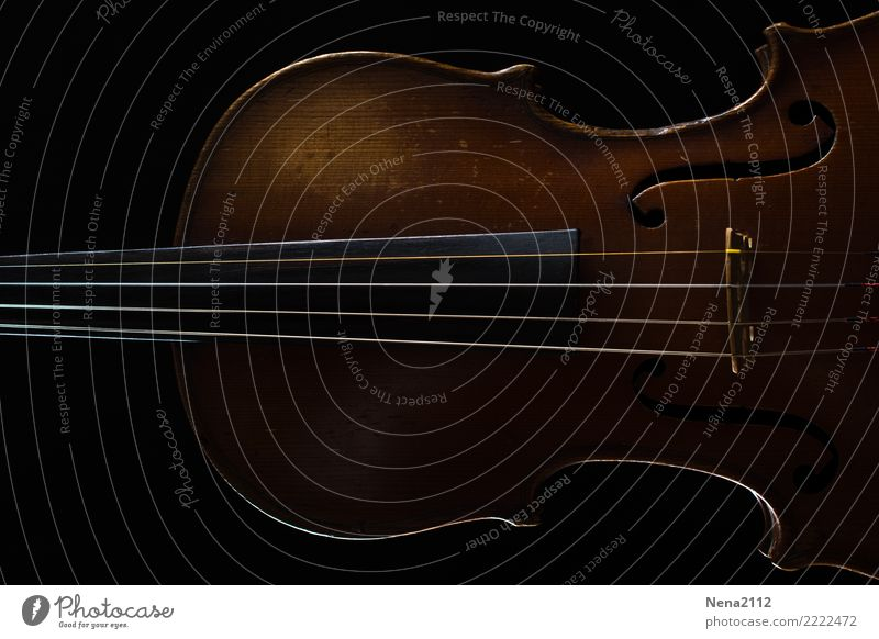 Geige 02 Kunst Musik Musik hören Konzert Open Air Bühne Oper Band Musiker Orchester Spielen fantastisch Cello Streichinstrumente Saiteninstrumente Holz