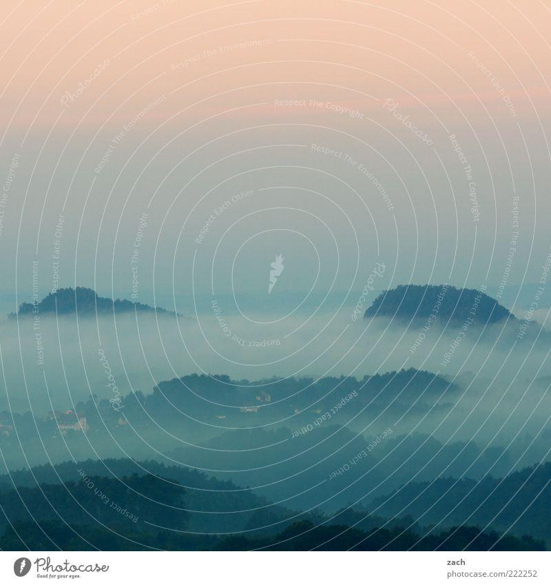 Morgens in Sachsen Natur blau Erholung Herbst Berge u. Gebirge Freiheit rosa Nebel Hügel außergewöhnlich Aussicht Fernweh Dunst Sonnenaufgang Farbverlauf