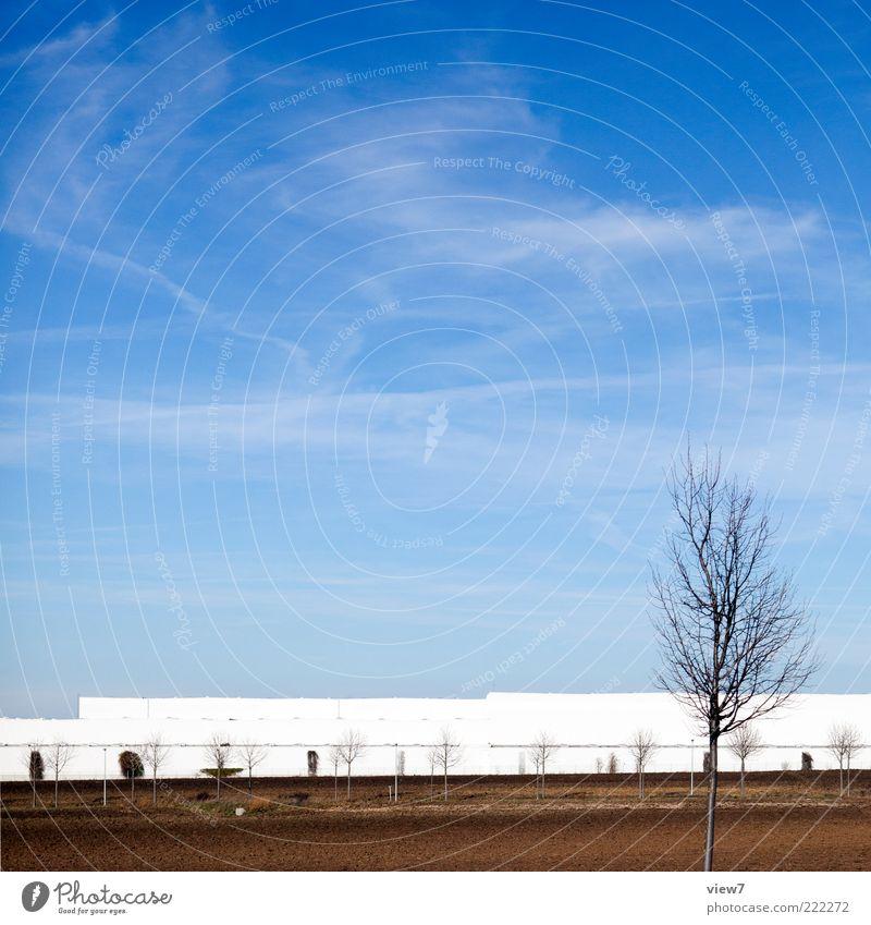 Logistikzentrum Handel Umwelt Natur Landschaft Wolkenloser Himmel Sonne Schönes Wetter Baum Haus Industrieanlage Fabrik Fassade ästhetisch authentisch einfach