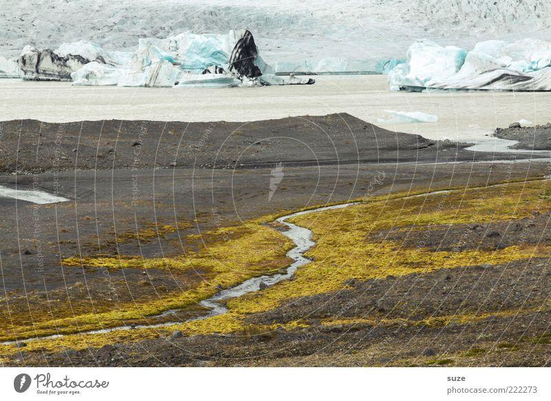 Ursprung Ferne Umwelt Natur Landschaft Erde Wasser Klima Klimawandel Gletscher Küste Seeufer Gletschereis Gletscherschmelze Gebirgssee authentisch