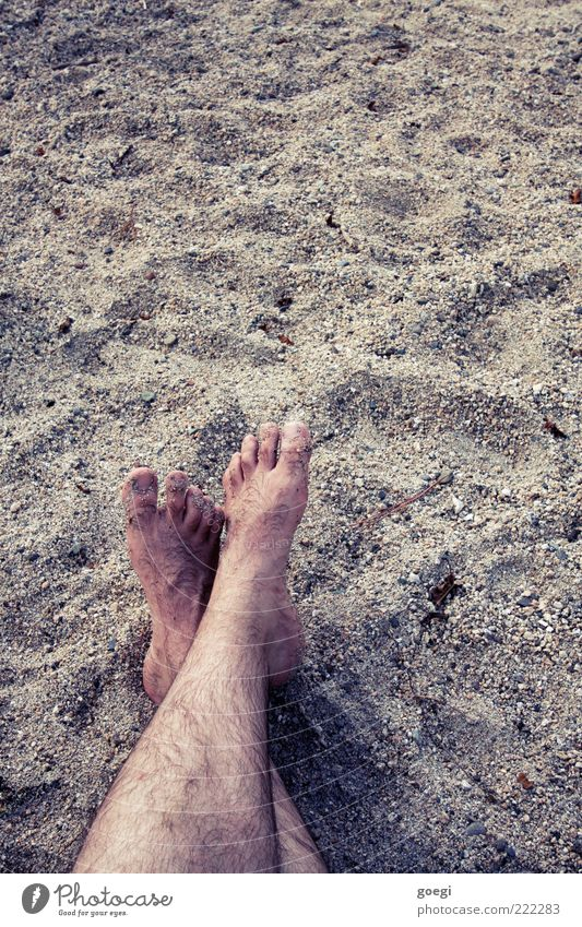 0oooo oooo0 maskulin Beine Fuß Sand Strand Erholung Ferien & Urlaub & Reisen Behaarung Zehen Farbfoto Außenaufnahme Textfreiraum oben Barfuß Textfreiraum rechts