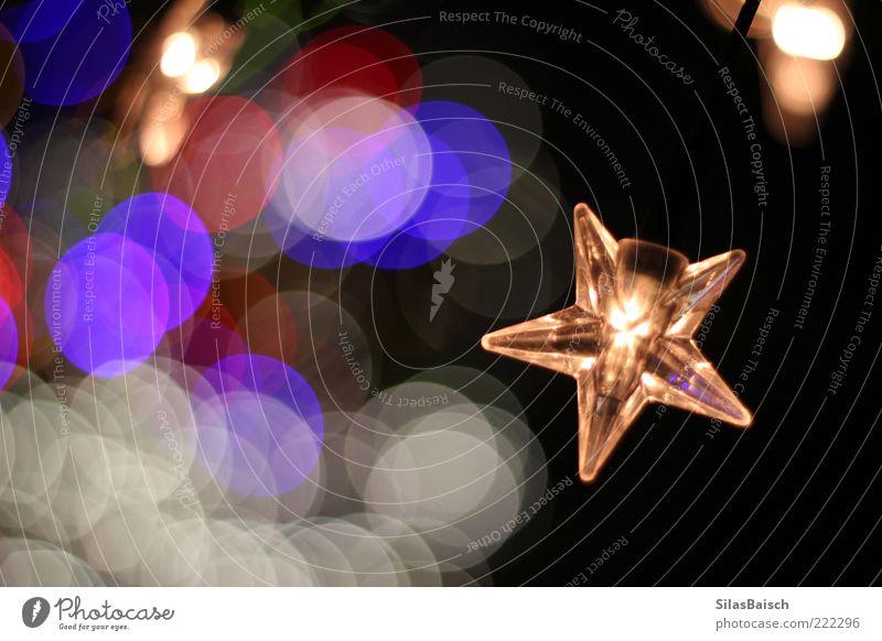 Sternenlicht Dekoration & Verzierung Lampe Lichterkette Weihnachtsdekoration Winter Weihnachtsstern glänzend leuchten schön Warmherzigkeit Farbfoto