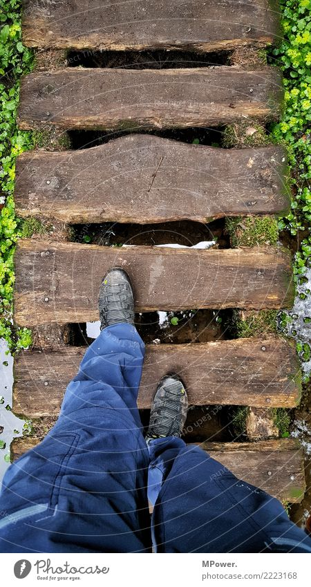 aufm holzweg Mensch maskulin Beine Fuß 1 Natur gehen Schuhe wandern Vogelperspektive Holzweg Steg Außenaufnahme Tourismus Tourist Wanderschuhe Farbfoto