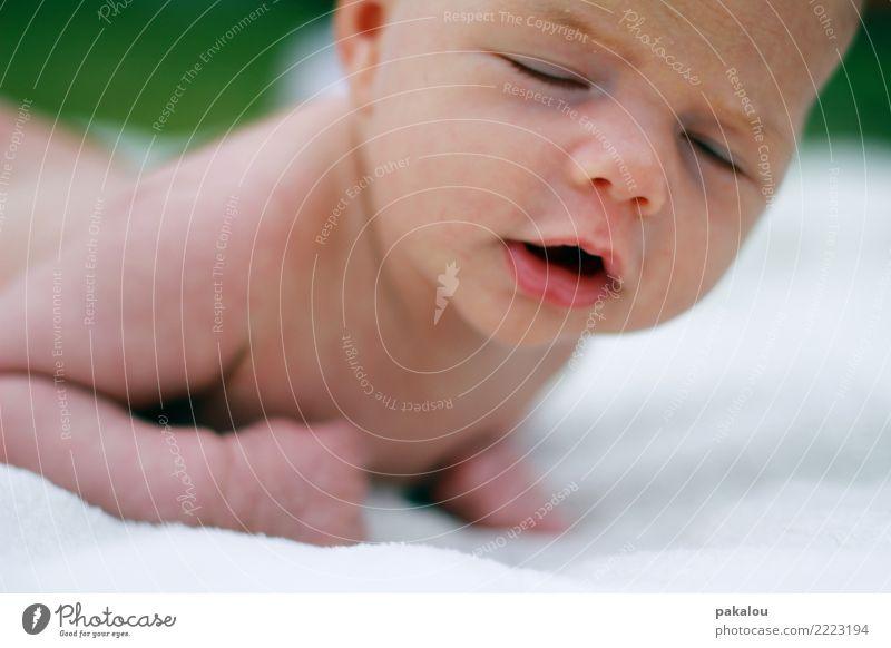 Psst Püppi ist sooo müde Baby Gesicht 1 Mensch 0-12 Monate schlafen einfach Geborgenheit Kindheit nackt Geburt unschuldig neugeboren gähnen Müdigkeit